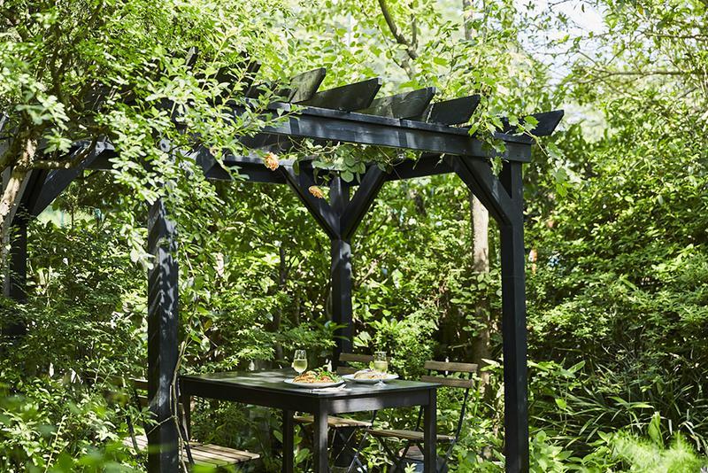 木漏れ日の中、グリーンシャワーをめいっぱい浴びながら、「cafe kaeru」の特等席でランチをお楽しみください!