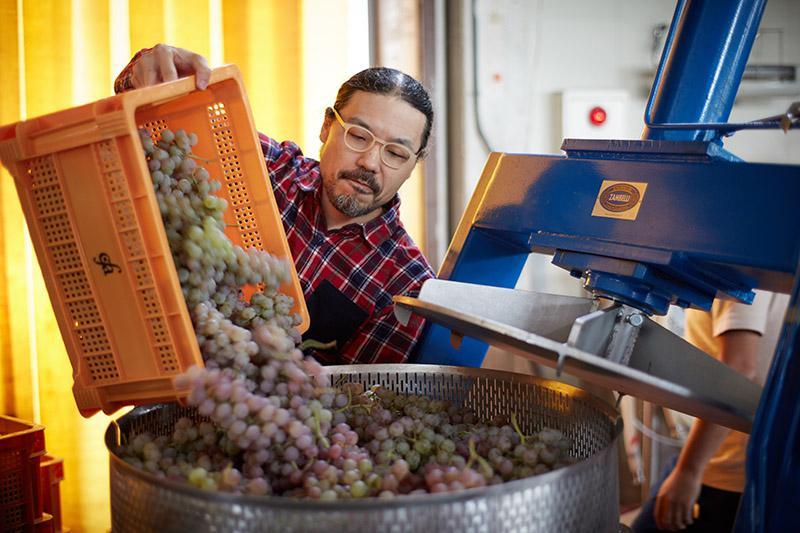 仲間たちとワイン造りを学ぶ ハヤシコウさん(ミズコルビノ・デザイン代表)