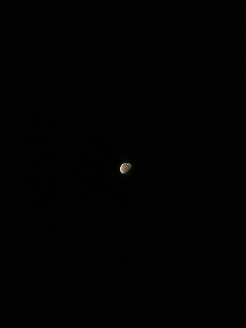 「MuseCam」を使用して撮影した月。ディテールまで写っているのがわかります。