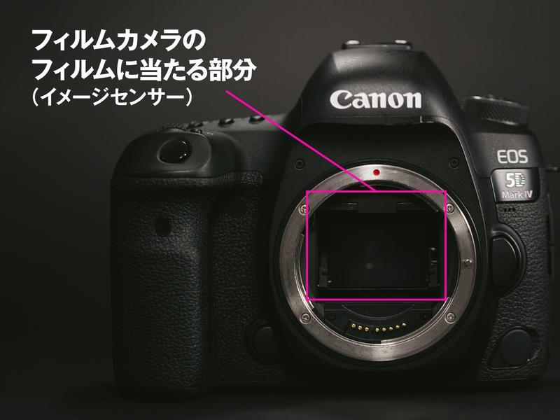 センサーサイズによって写真の画質は大きく左右されます。