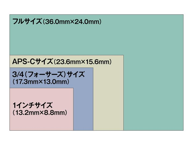 フィルムからデジカメへの過渡期の中で生まれた規格「35mmフルサイズ」。その他のセンサーサイズ(1インチ、フォーサーズ、APS-C)と比較すると、その大きさは圧倒的。